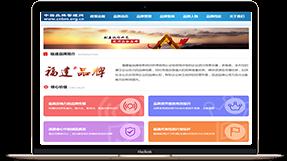 中国民族品牌振兴工程